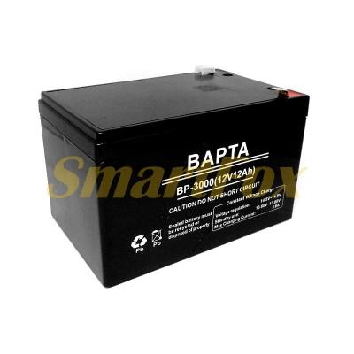 Аккумулятор BAPTA 12V12AH BP-3000