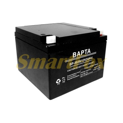 Аккумулятор BAPTA 12V24AH BP-5930