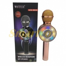 Микрофон караоке SL-WS669