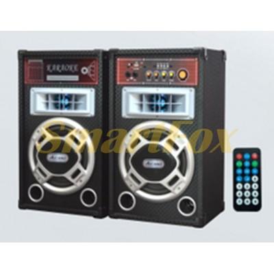 Акустическая система USBFM-198B-DT