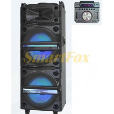 Акустическая система DJ-1035