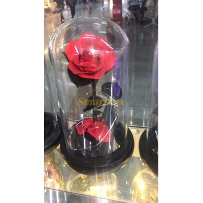 Роза в колбе с LED КРАСНАЯ NG-1PC FLOWER
