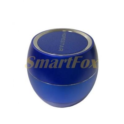 Портативная колонка Bluetooth HOPESTAR H30