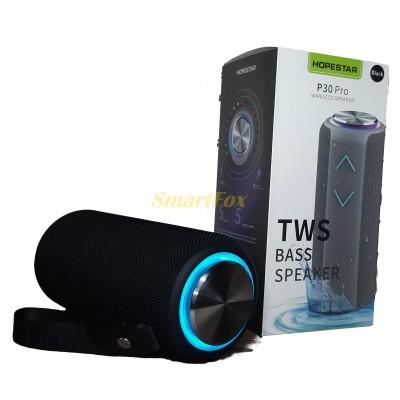 Портативная колонка Bluetooth HOPESTAR P30 PRO Черный