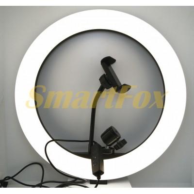 Лампа LED кольцевая S31 33 см + штатив
