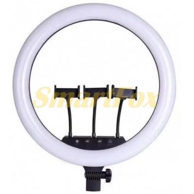 Лампа LED кольцевая SLP-G500 45 см