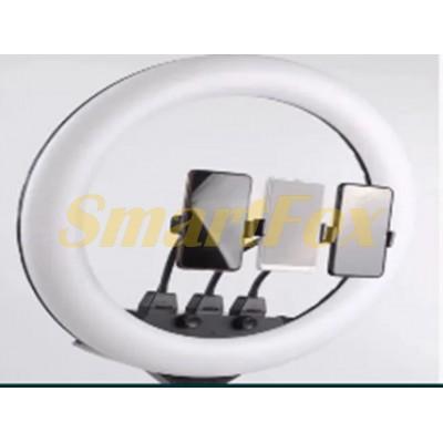 Лампа LED кольцевая SLP-G63 55 см + штатив и пульт