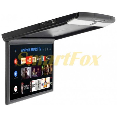 Потолочный монитор TM-1599FS