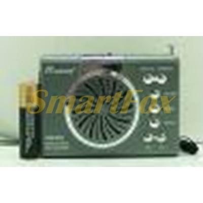 Радиоприемник с USB RM-2420 + SD (9.5х6.5х2.5 см)
