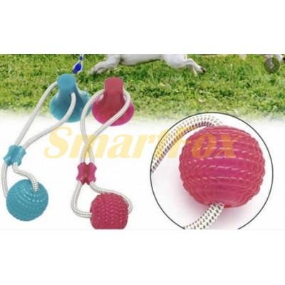 Игрушка для домашних животных мяч на веревке с присоской SL-1126