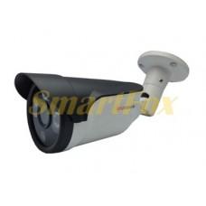 IP-камера FS-6366N13