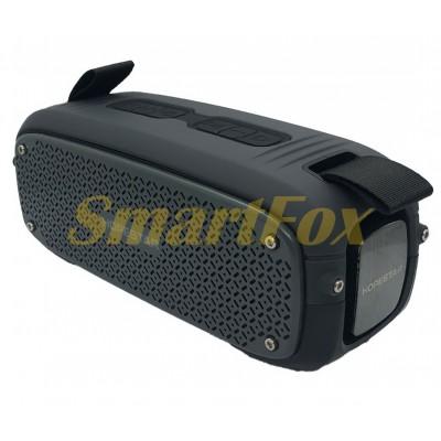 Портативная колонка Bluetooth HOPESTAR A21 Черный